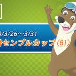 2020尼崎競艇 開設67周年記念【G1尼崎センプルカップ】最終日、優勝戦の予想と買い目、結果更新♪